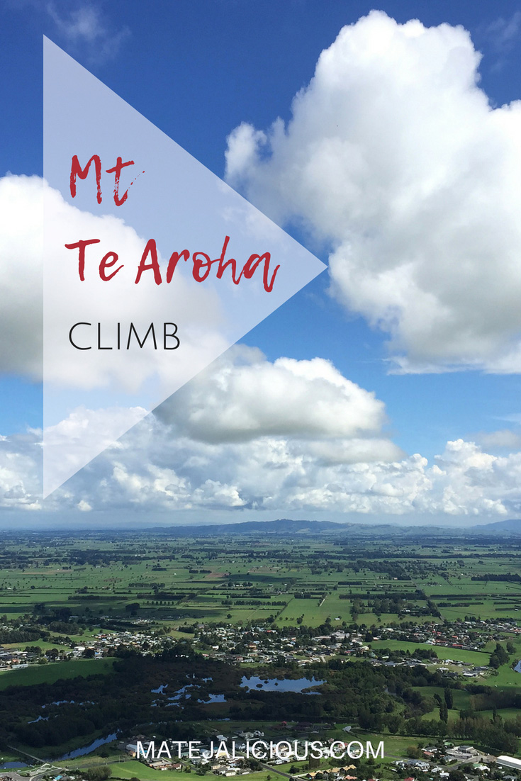 Mt Te Aroha Climb - Matejalicious Travel and Adventure