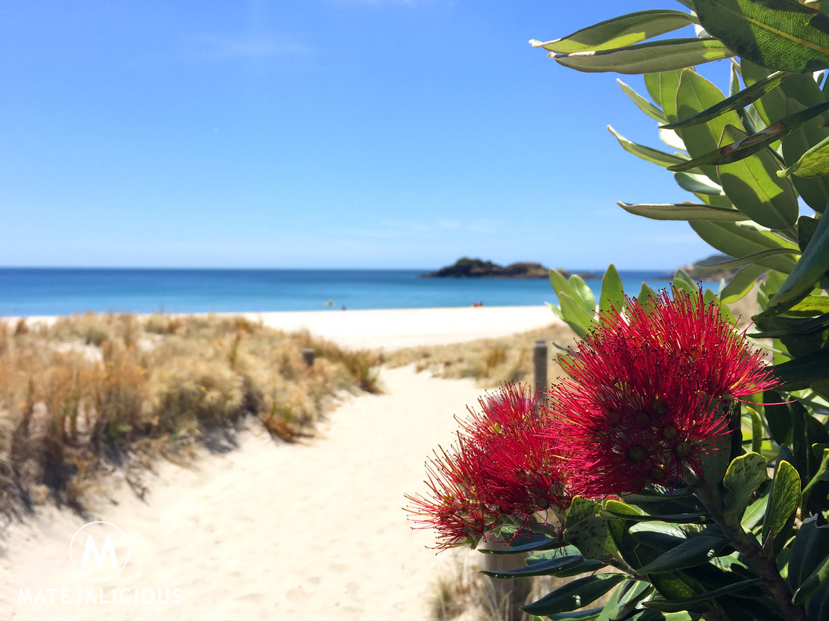 Ocean Beach Whangarei Heads - Matejalicious Travel and Adventure