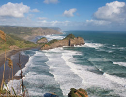 Bethells Beach Auckland Featured - Matejalicious Travel and Adventure