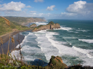 Bethells Beach Auckland - Matejalicious Travel and Adventure