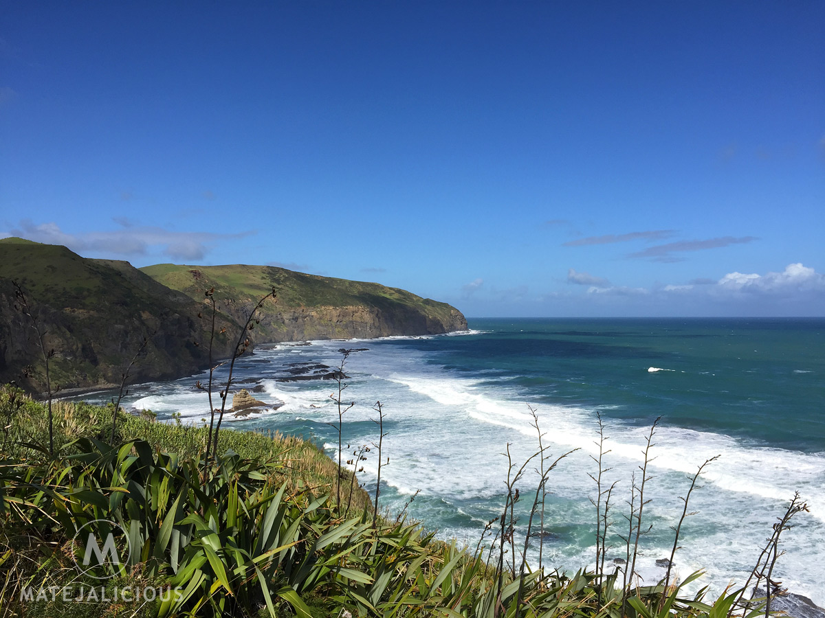 Te Henga Walkway - Matejalicious Travel and Adventure