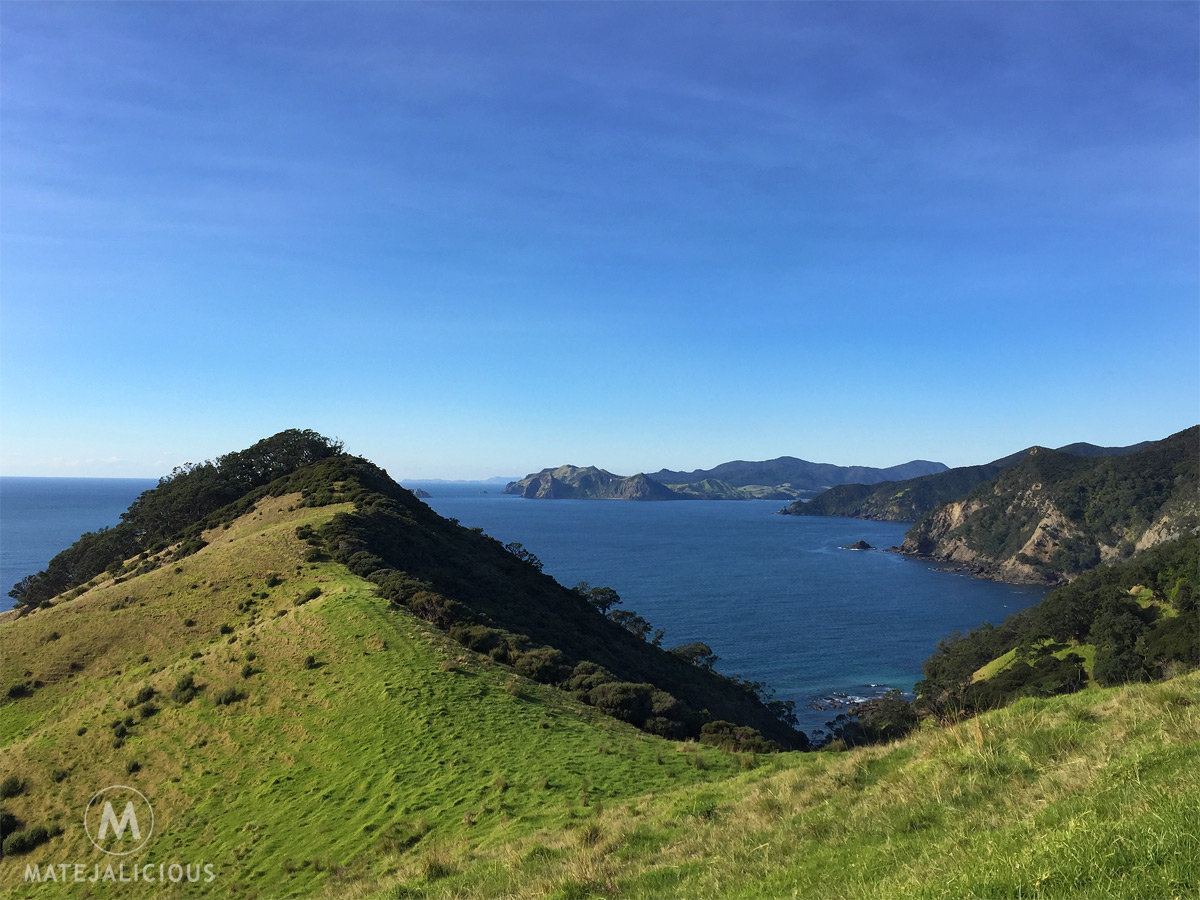 Coromandel Coastal Walkway - Matejalicious Travel and Adventure