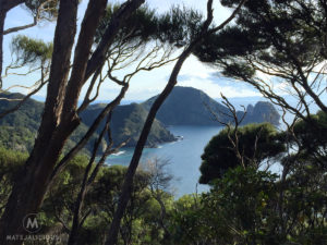 Coromandel Peninsula Walkway - Matejalicious Travel and Adventure