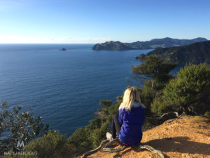 Coromandel Walkway Lookout Point - Matejalicious Travel and Adventure