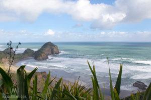 O'Neill Bay Auckland - Matejalicious Travel and Adventure