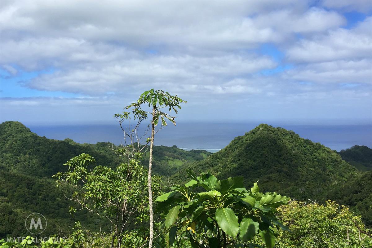 Hiking Rarotonga - Matejalicious Travel and Adventure