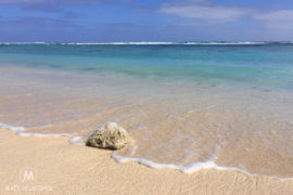 Rarotonga Beaches - Matejalicious Travel and Adventure