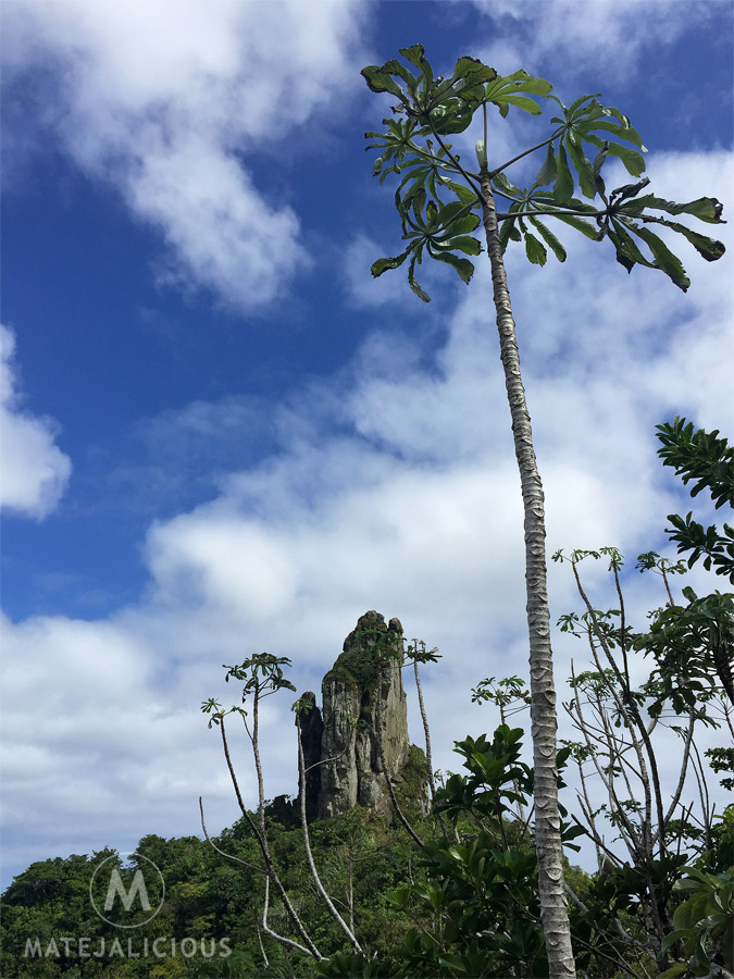 The Needle Hike Rarotonga - Matejalicious Travel and Adventure