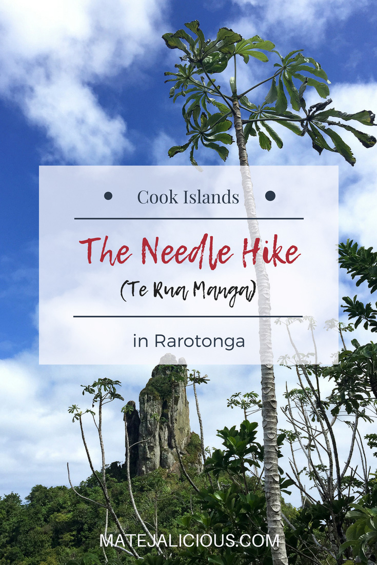 The needle hike (Te Rua Manga) in Rarotonga - Matejalicious Travel and Adventure