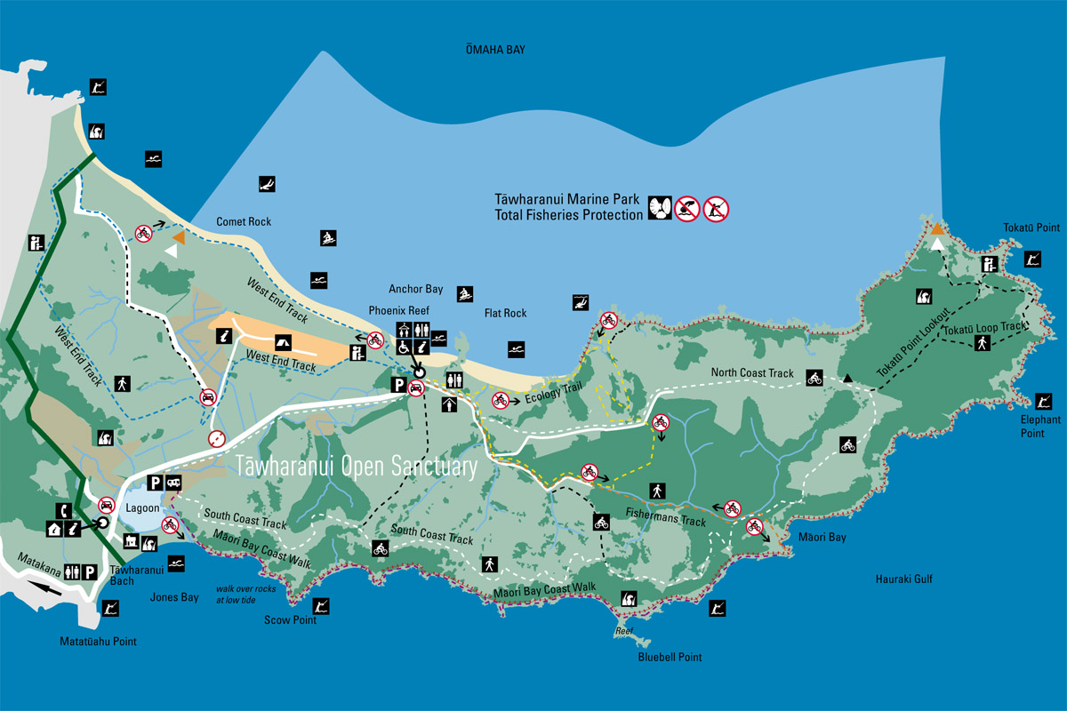 Tawharanui Map - Matejalicious Travel and Adventure