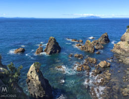 Tokatu Point Tawharanui - Matejalicious Travel and Adventure