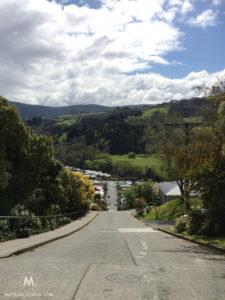 Baldwin Street Dunedin - Matejalicious Travel and Adventure