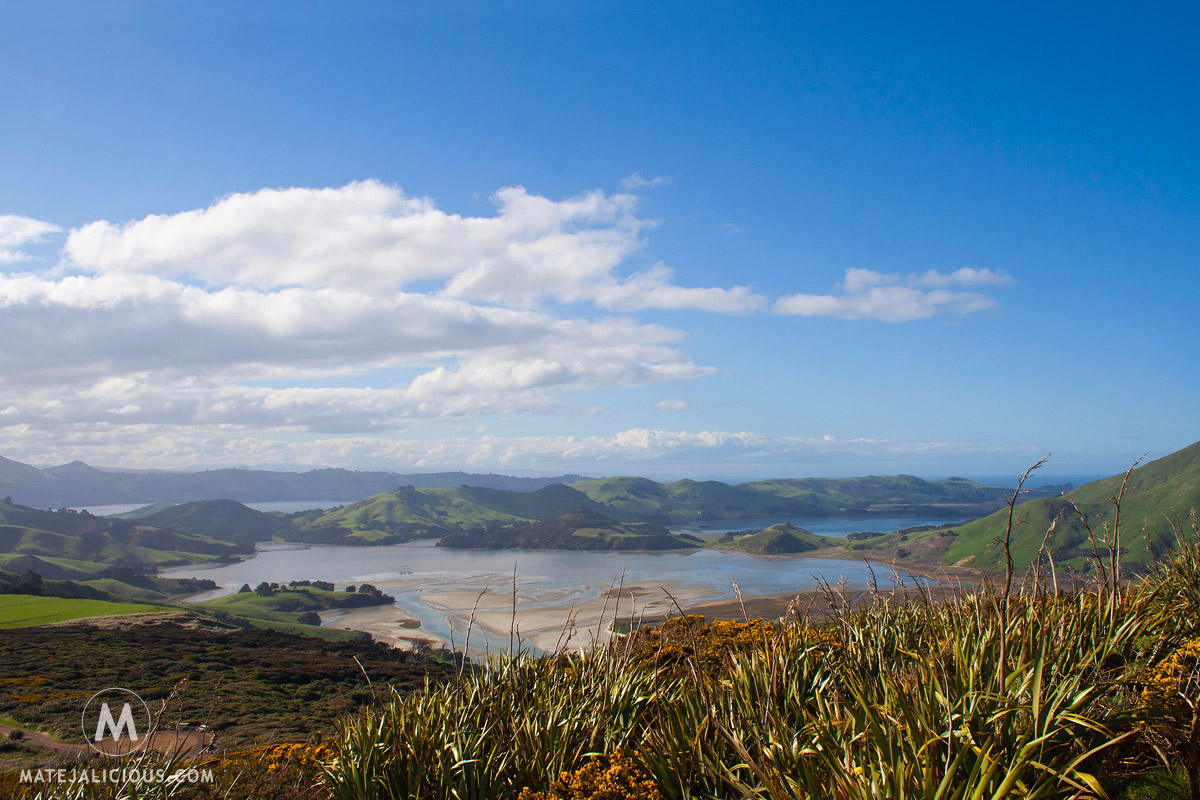 Otago Peninsula - Matejalicious Travel and Adventure