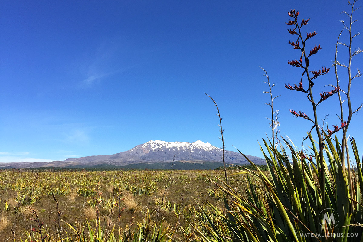 Mount Ruapehu - Matejalicious Travel and Adventure