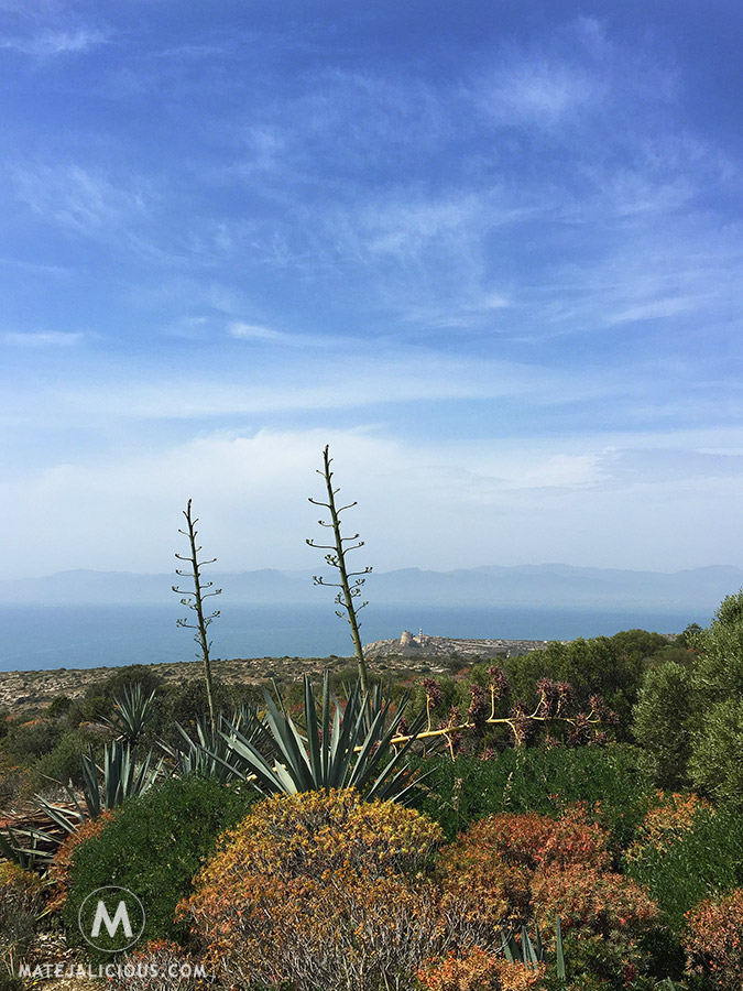 Calamosca - Matejalicious Travel and Adventure
