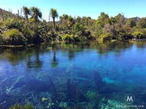Pupu Springs - Matejalicious Travel and Adventure