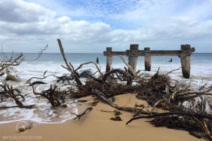 Beaches Mornington - Matejalicious Travel and Adventure