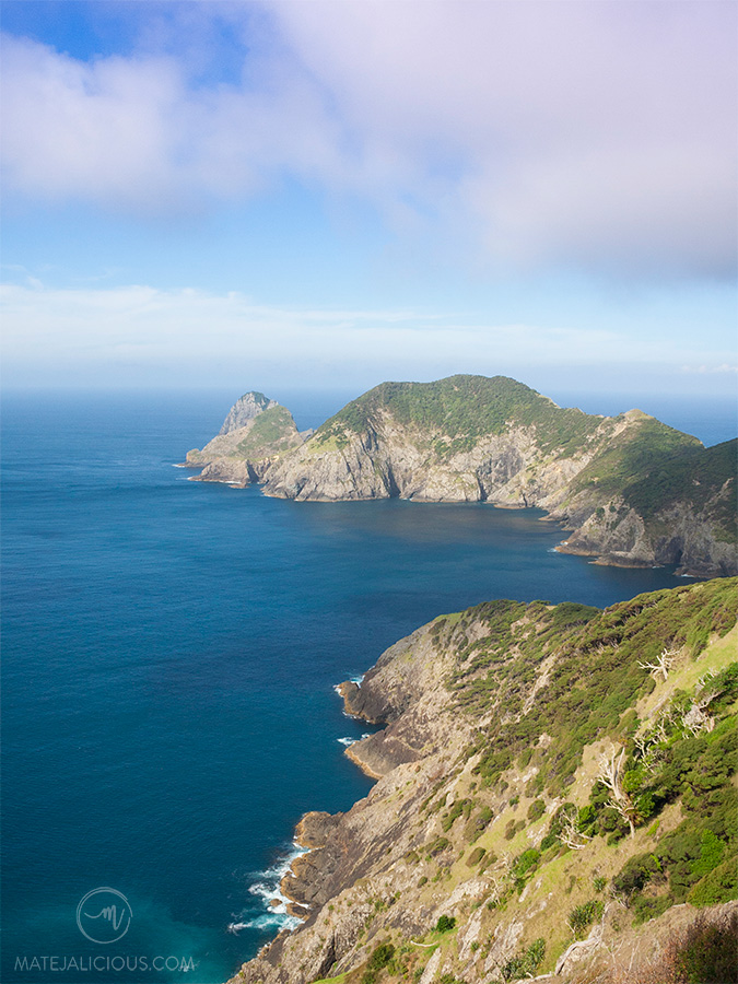 Cape Brett Top Views - Matejalicious Travel and Adventure