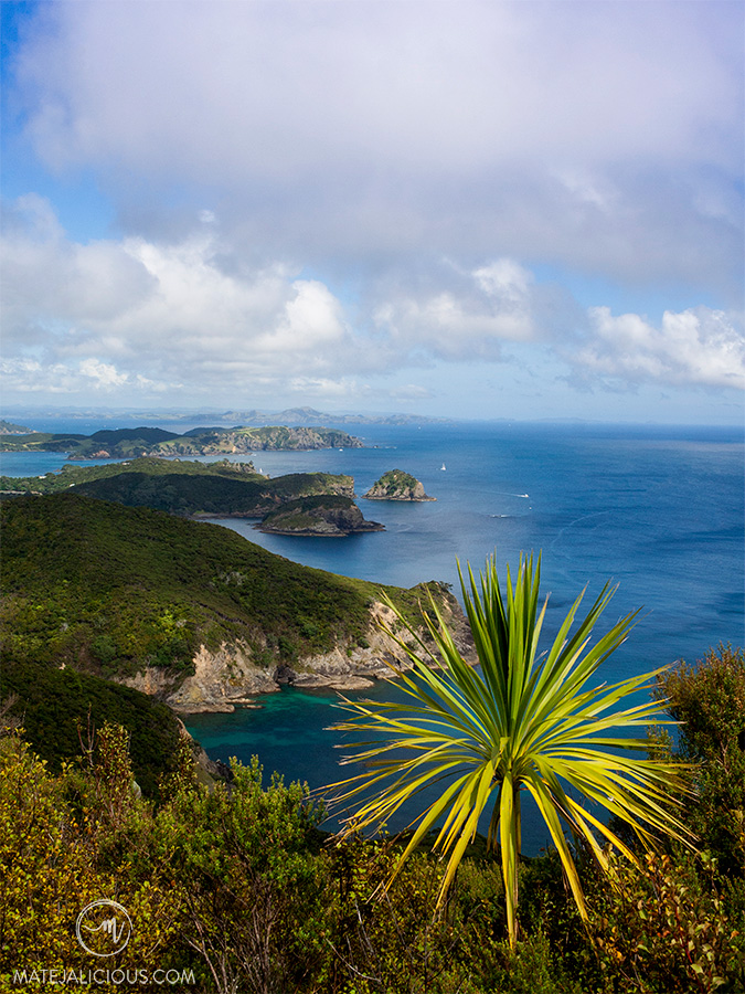 Cape Brett Views - Matejalicious Travel and Adventure