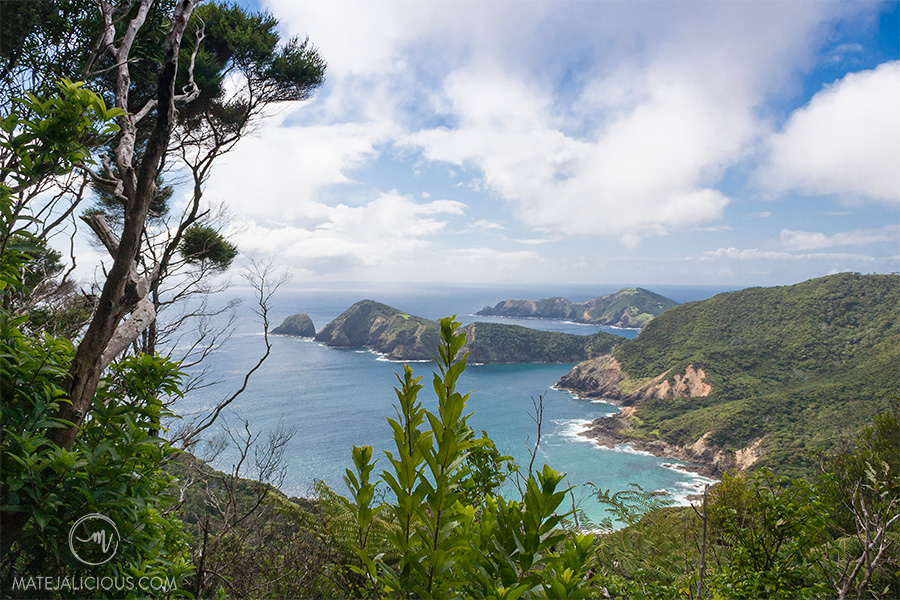 Hike Cape Brett - Matejalicious Travel and Adventure