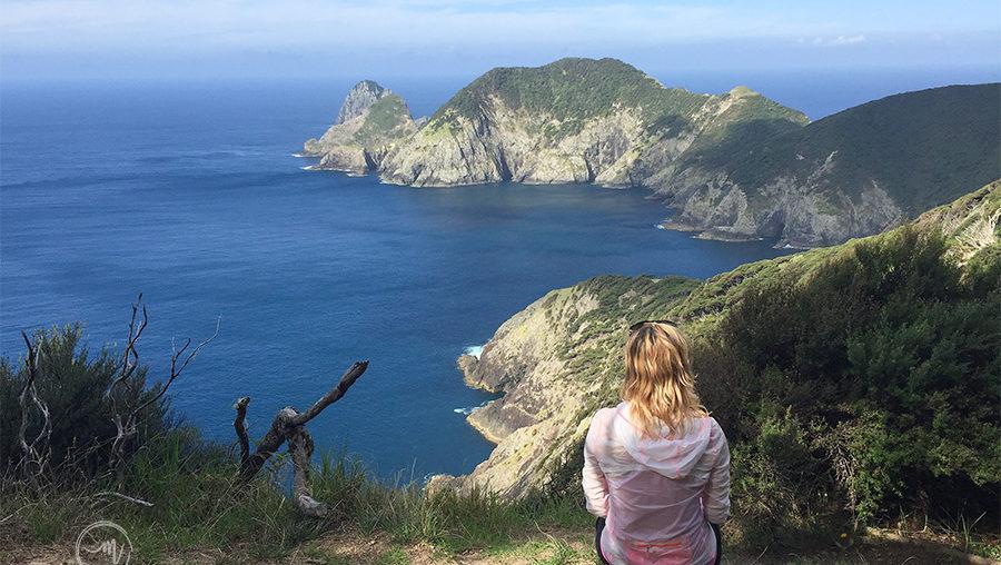 Cape Brett Hike Explained