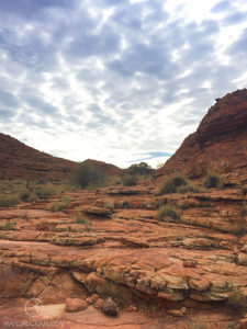 Kings Canyon Hiking - Matejalicious Travel and Adventure