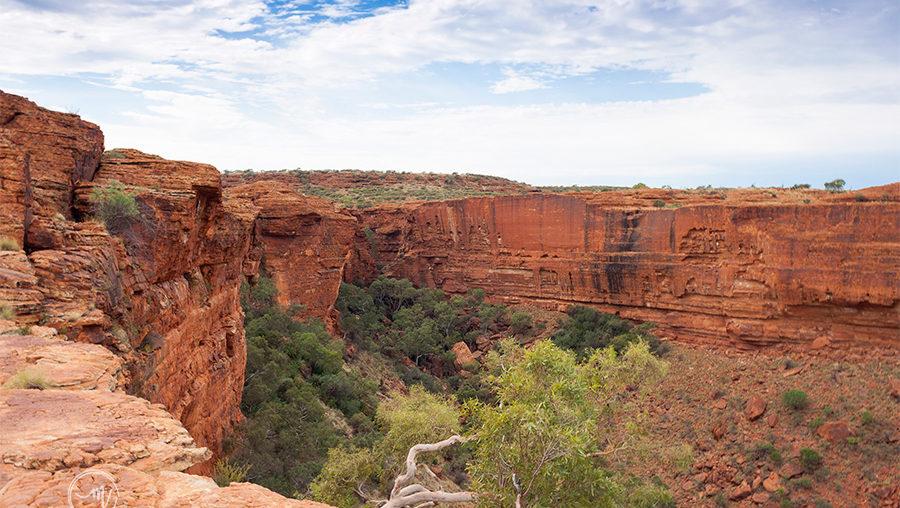Discover Australia's Kings Canyon
