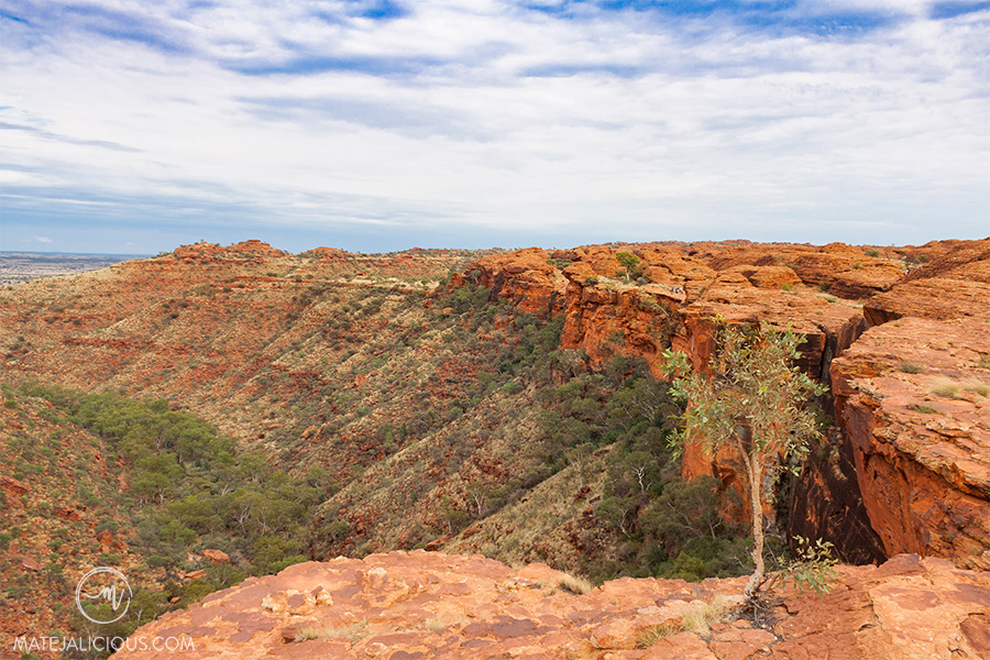 Kings Canyon Scale - Matejalicious Travel and Adventure