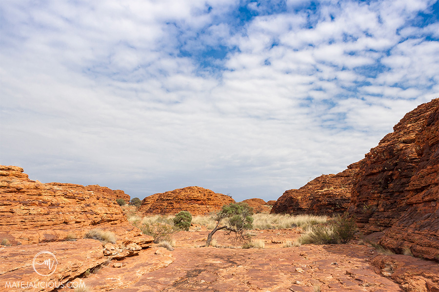 Kings Canyon Walk - Matejalicious Travel and Adventure