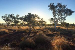 Roadtrip Australia Desert - Matejalicious Travel and Adventure
