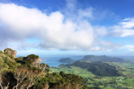 The Essential Guide to Whangarei Heads