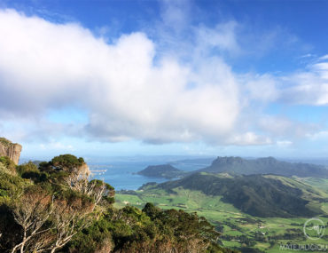 Bream Head Walk - Matejalicious Travel and Adventure