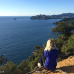 Coromandel Walkway Featured - Matejalicious Travel and Adventure