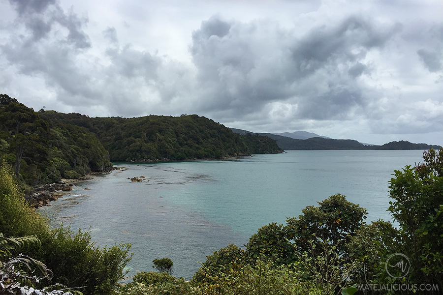 Rakiura Hiking - Matejalicious Travel and Adventure