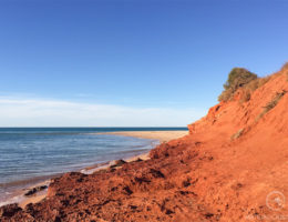 Cape Peron Shark Bay - Matejalicious Travel and Adventure