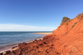 Cape Peron Shark Bay - Matejalicious Travel and Adventure