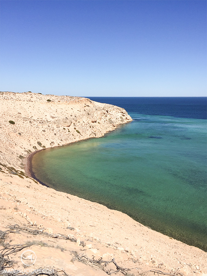 Eagle Bluff Shark Bay - Matejalicious Travel and Adventure