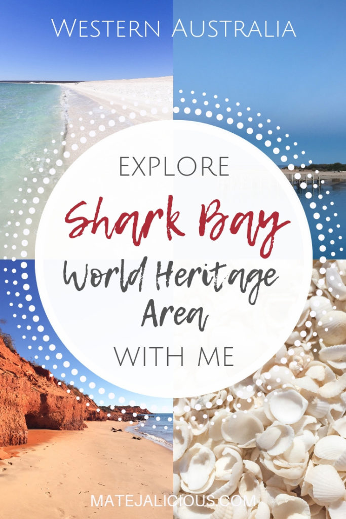 Explore Shark Bay With Me - Matejalicious Travel and Adventure