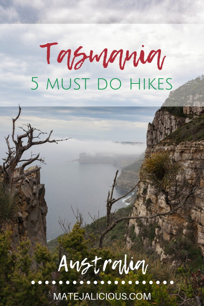 Tasmania 5 must do hikes - Matejalicious Travel and Adventure