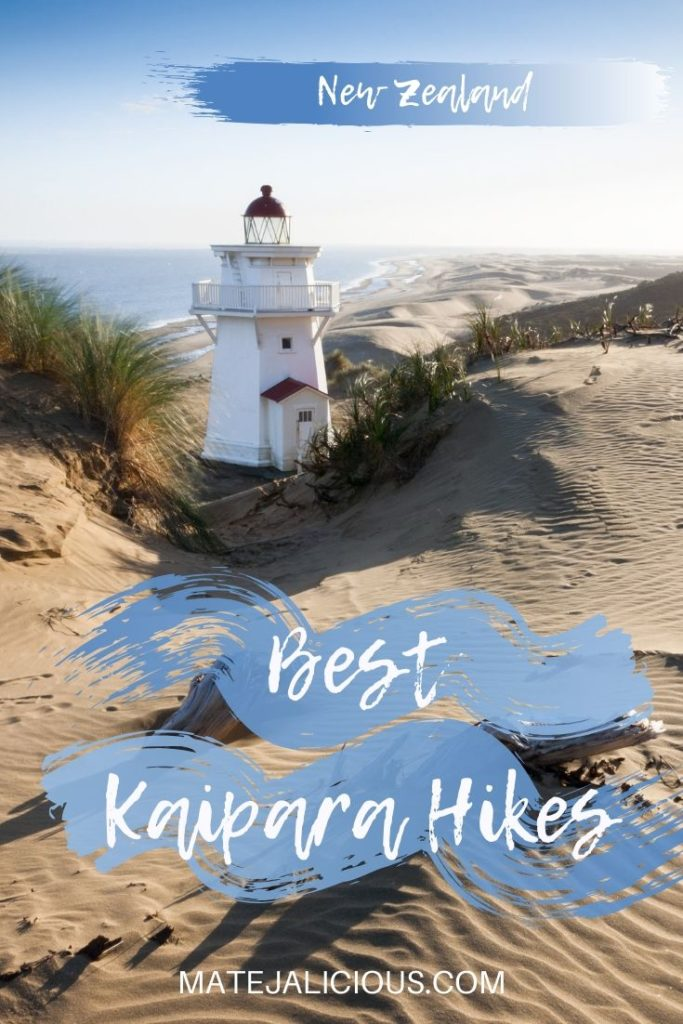 Best Kaipara Hikes - Matejalicious Travel and Adventure