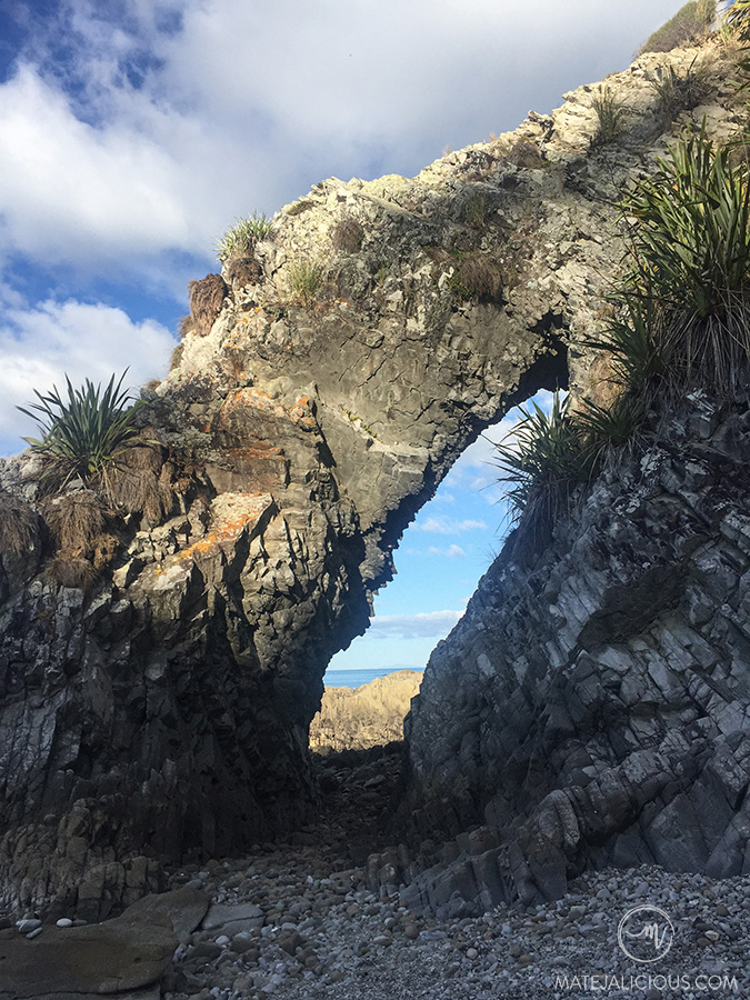 Mangawhai Cliffs Walkway - Matejalicious Travel and Adventure