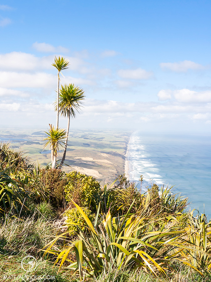 Maunganui Bluff - Matejalicious Travel and Adventure