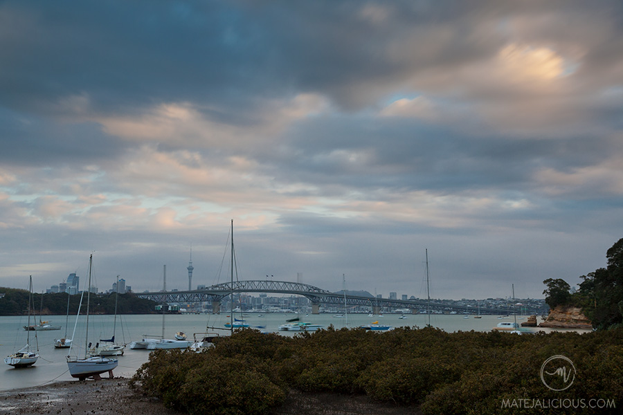 Auckland City from Little Shoal Bay - Matejalicious Travel and Adventure