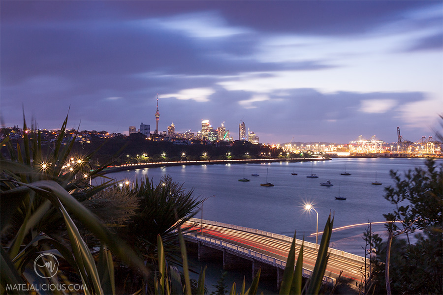 Auckland City from Orakei - Matejalicious Travel and Adventure