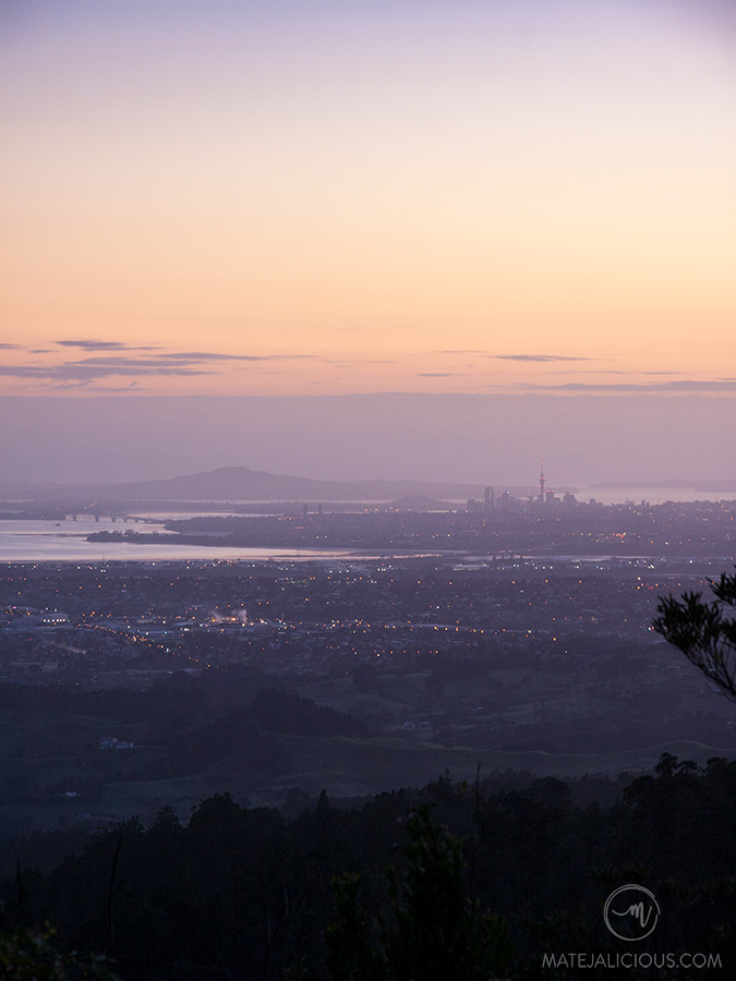 Auckland City from Waitakere - Matejalicious Travel and Adventure