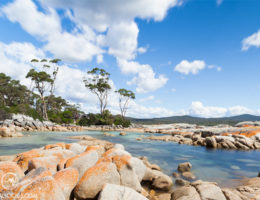 Tasmania - Matejalicious Travel and Adventure