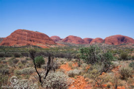 Kata Tjuta - Matejalicious Travel and Adventure