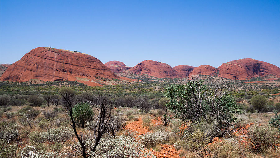 Hiking the Red Centre – Uluru vs Kata Tjuta