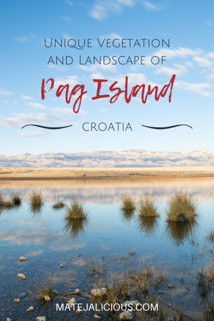 Unique Vegetation and Landscape of Pag Island - Matejalicious Travel and Adventure